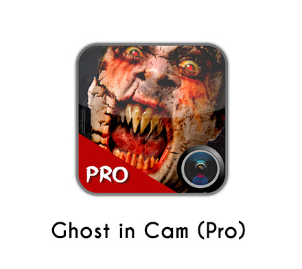 gost-in-cam-pro